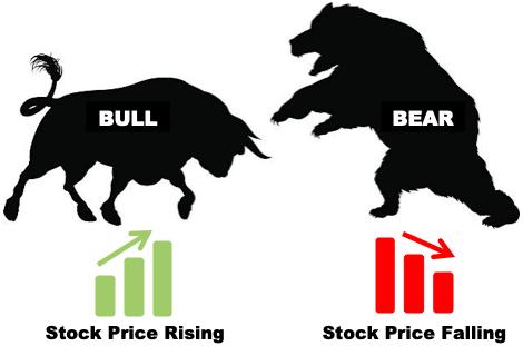 Bull Vs Bear Market - Stock Rise and Fall