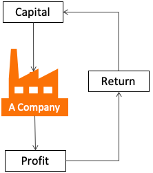 Understanding A Company - Profit and Profitability
