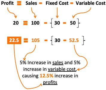 Leverage Effect - Example12- Profit Growth 12.5%