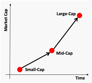 About Small-cap stocks - Life Cycle