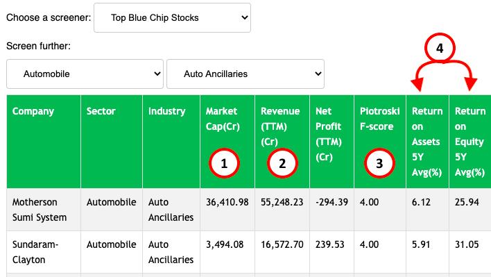 Blue Chip Stock Screener - Mcap, revenuem, F score, ROA, ROE