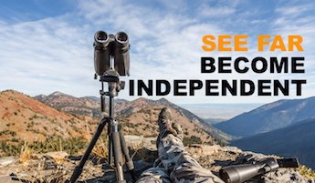 How to be Financially Independent - image