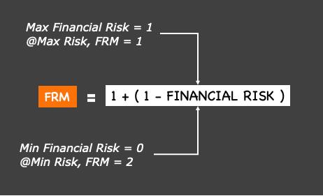 FINANCIAL RISK MULTIPLIER FORMULA