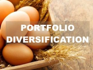 how defensive investors can diversify investment portfolio -image